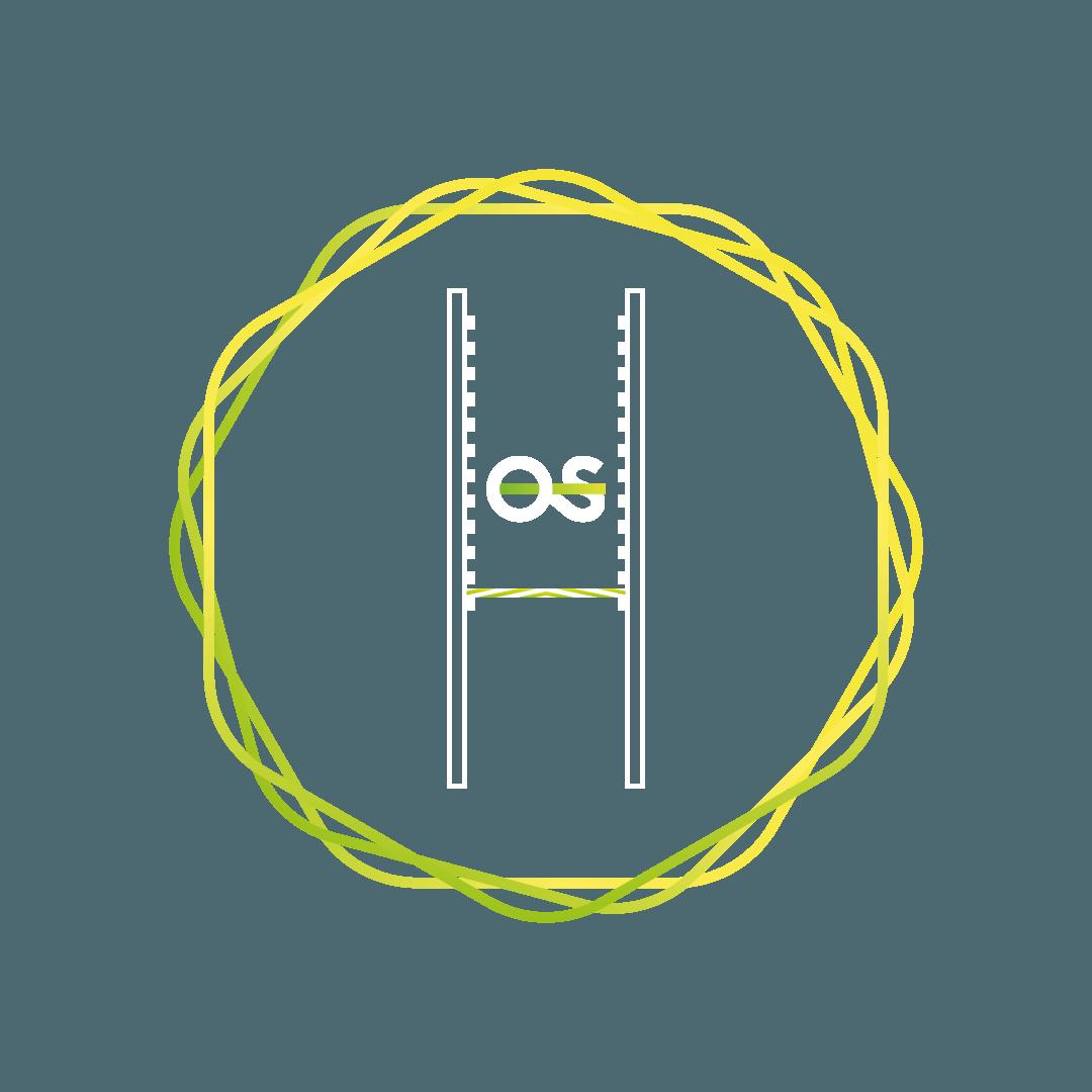 De Obstacles - Salmon Ladder